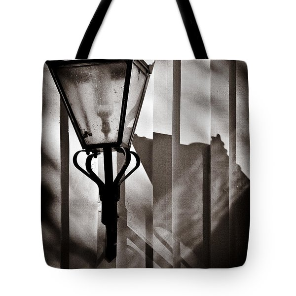 Moth And Lamp Tote Bag by Dave Bowman