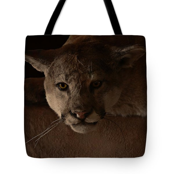 Mountain Lion A Large Graceful Cat Tote Bag by Christine Till