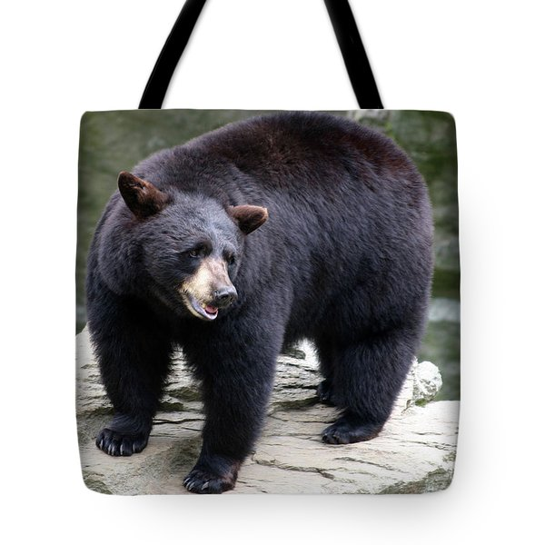 Mr Bear Tote Bag by Karol Livote