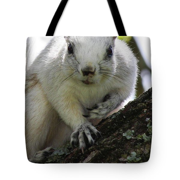 Mr. Inquisitive I  Tote Bag by Betsy C  Knapp