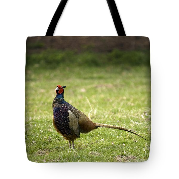 Mr Pheasant Tote Bag by Angel  Tarantella