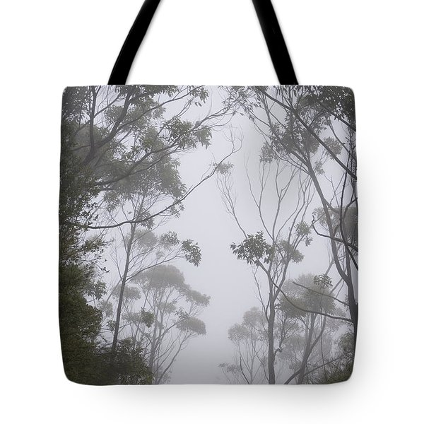 Mt Lanaihale, Munro Trail Tote Bag by Greg Vaughn - Printscapes