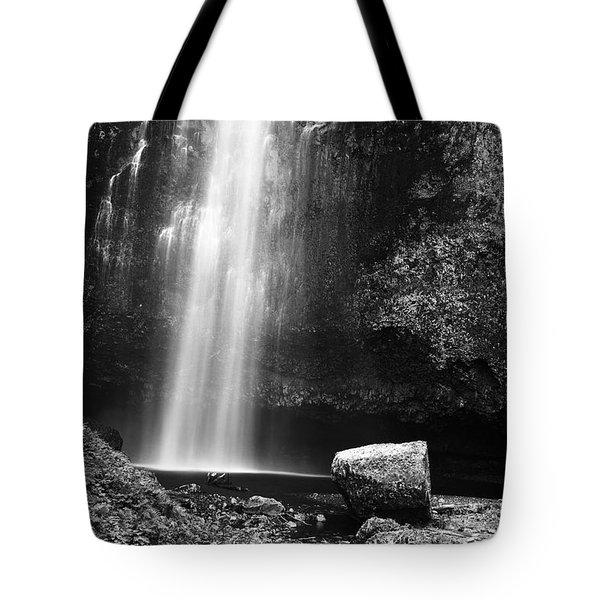 Multnomah Falls Base Tote Bag by Charmian Vistaunet