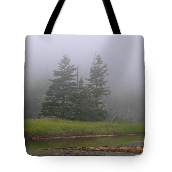 Mystical Acadia National Park Tote Bag by Juergen Roth