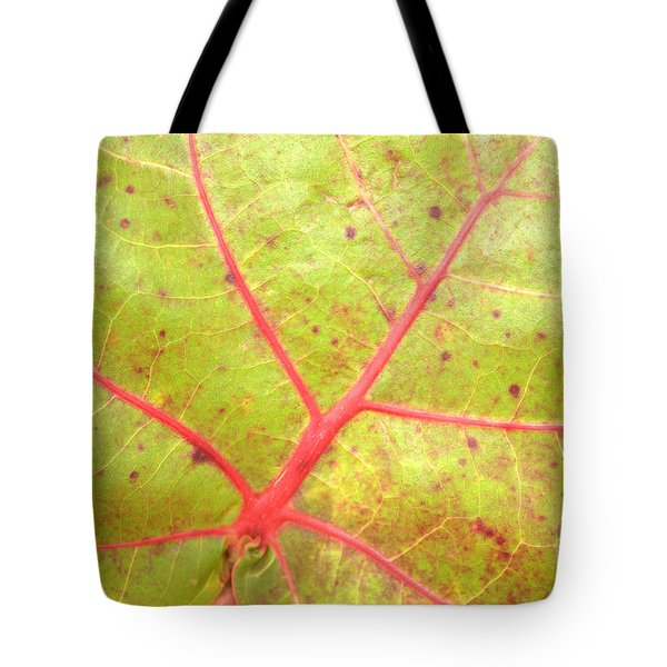 Nature Abstract Sea Grape Leaf Tote Bag by Carol Groenen