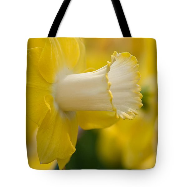 Nature's Trumpet Tote Bag by Charles Dobbs