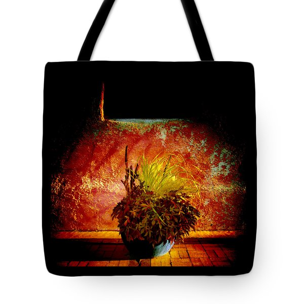 New Mexico Night Tote Bag by Ann Powell