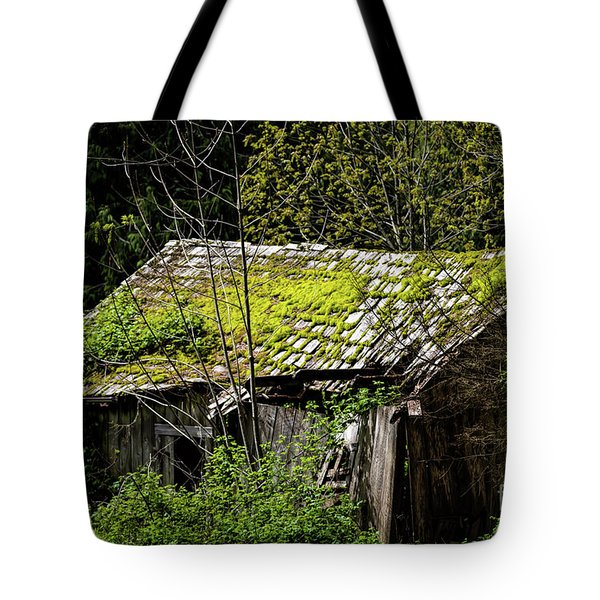 Newton's 1st Law Tote Bag by Jon Burch Photography