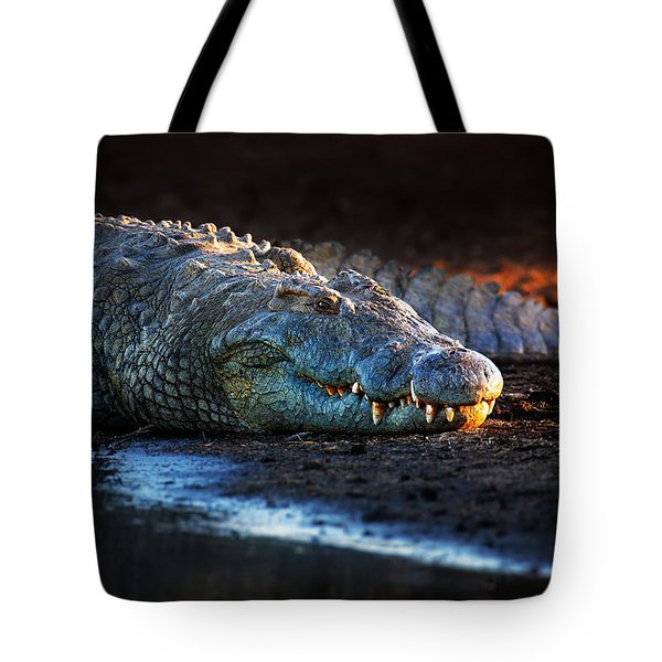 Nile Crocodile On Riverbank-1 Tote Bag by Johan Swanepoel