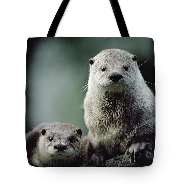 North American River Otter Lontra Tote Bag by Gerry Ellis