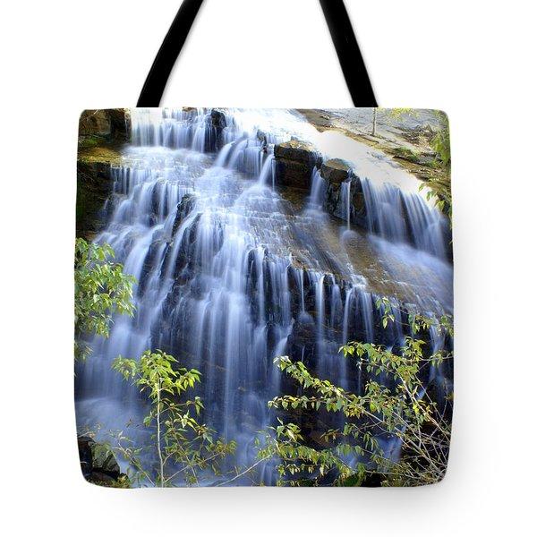 Northfork Falls Tote Bag by Marty Koch