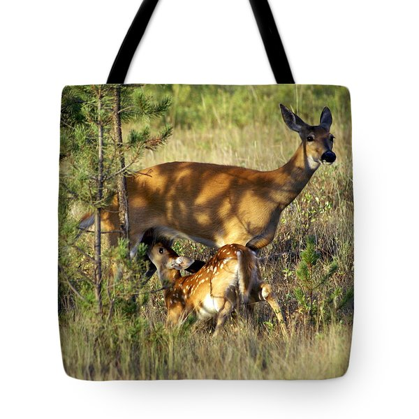 Nursing Fawn Tote Bag by Marty Koch
