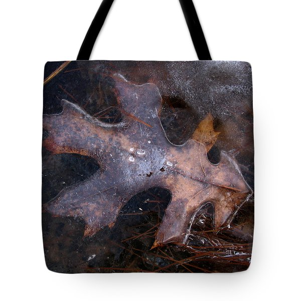 Oak Preservation Tote Bag by Adam Long