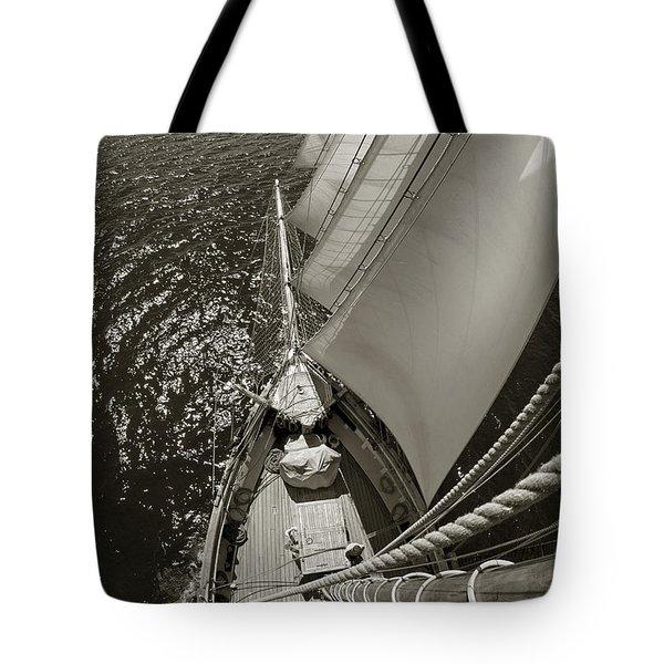 Ocean View Tote Bag by Robert Lacy