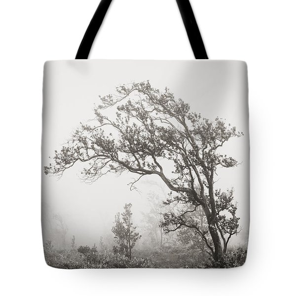 Ohia Lehua Tree Tote Bag by Greg Vaughn - Printscapes