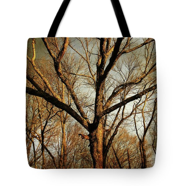 Old Faithful Tote Bag by Amy Tyler