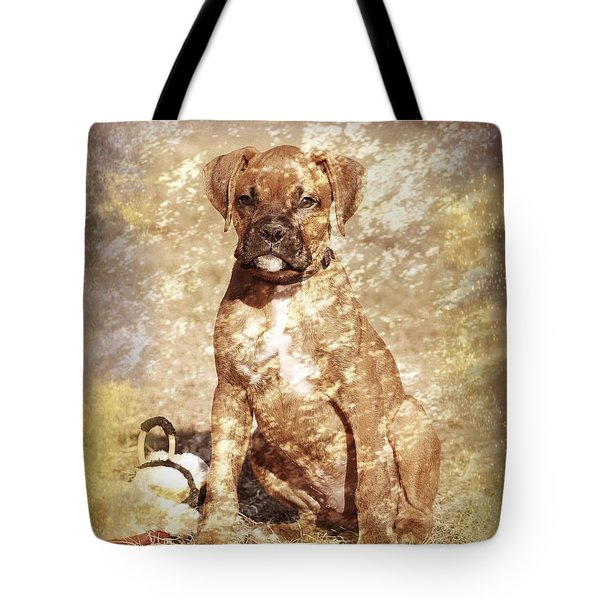 Old Time Boxer Portrait Tote Bag by Angie Tirado