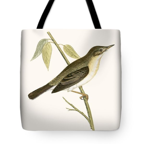 Olivaceous Warbler Tote Bag by English School