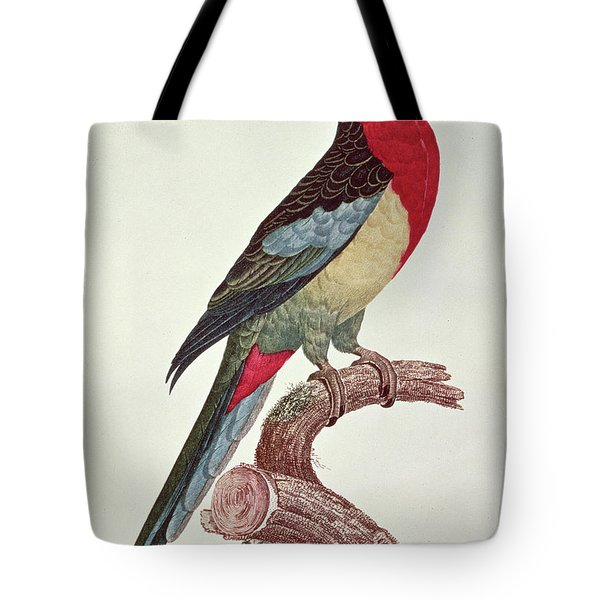 Omnicolored Parakeet Tote Bag by Jacques Barraband