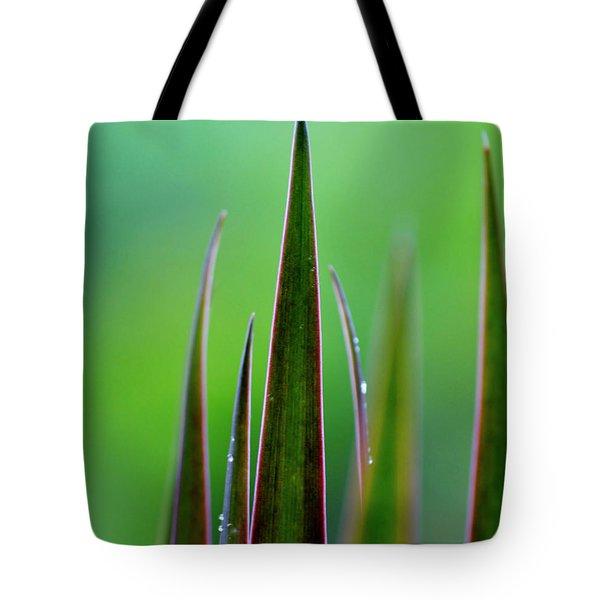On Guard Tote Bag by Melanie Moraga