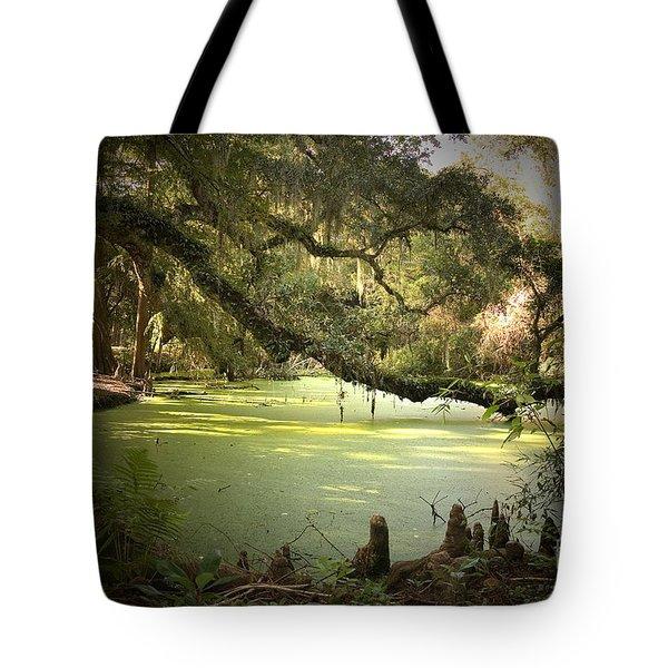On Swamp's Edge Tote Bag by Scott Pellegrin