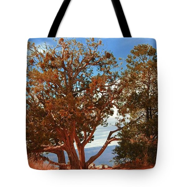 On The Edge Tote Bag by Kathleen Struckle