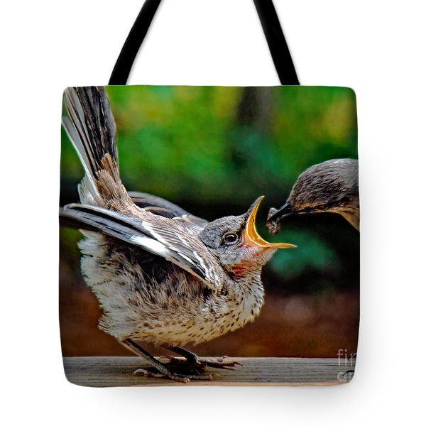 Open Wide Tote Bag by Sue Melvin