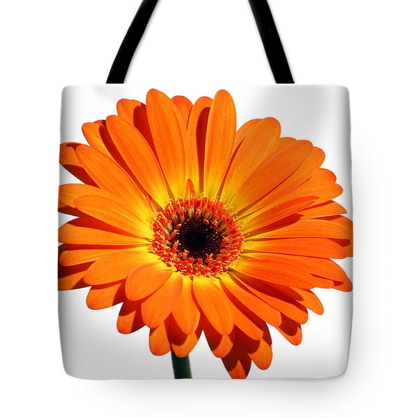 Orange Gerber Daisy Perfection Tote Bag by Juergen Roth
