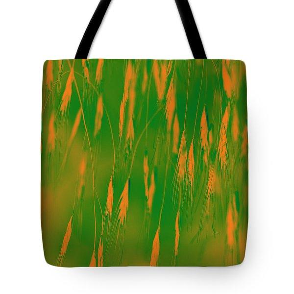 Orange Grass Spikes Tote Bag by Heiko Koehrer-Wagner
