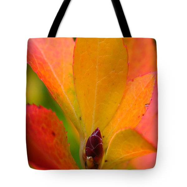 Orange Leaves Tote Bag by Juergen Roth