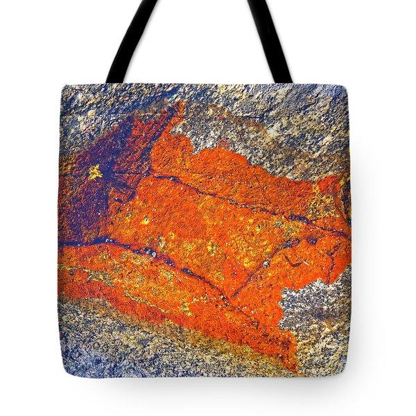 Orange lichen Tote Bag by Heiko Koehrer-Wagner