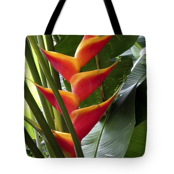 Orange Paradise Tote Bag by Cheryl Young