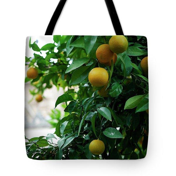 Orange Tree Tote Bag by Lorraine Devon Wilke