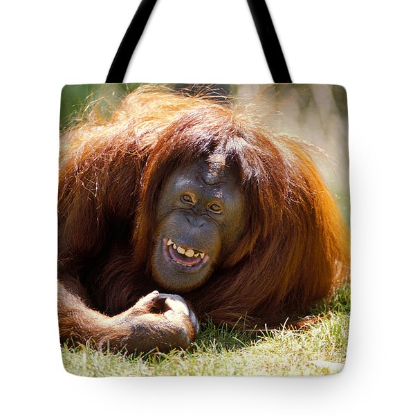 orangutan in the grass Tote Bag by Garry Gay