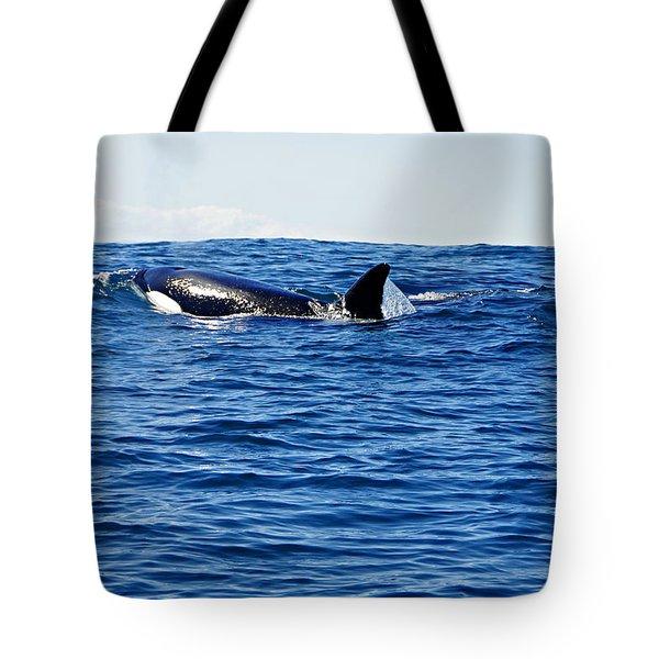 Orca Tote Bag by Marilyn Wilson