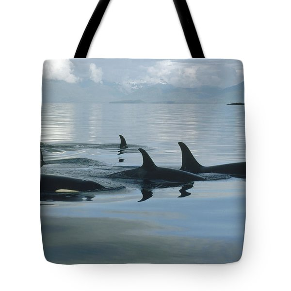 Orca Pod Johnstone Strait Canada Tote Bag by Flip Nicklin