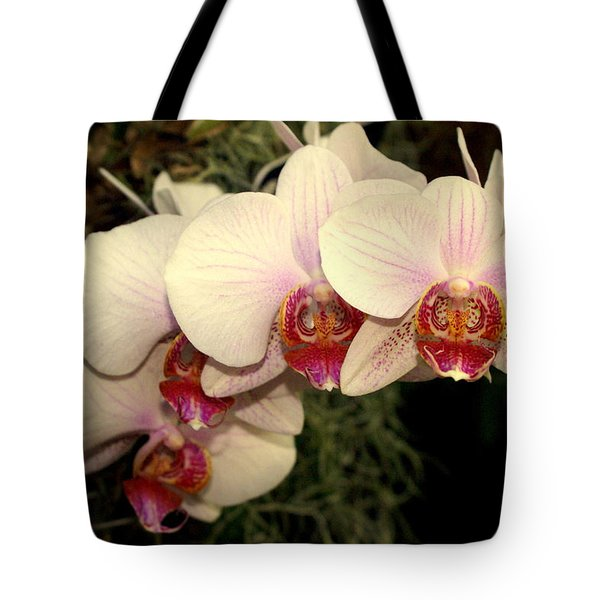 Orchid 19 Tote Bag by Marty Koch