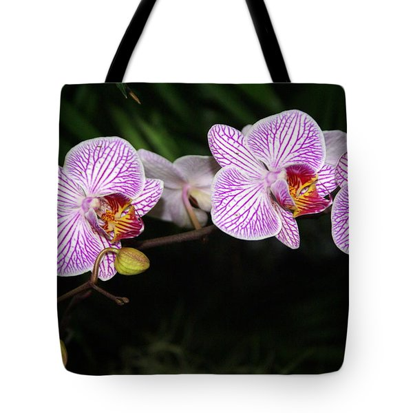 Orchid 2 Tote Bag by Marty Koch
