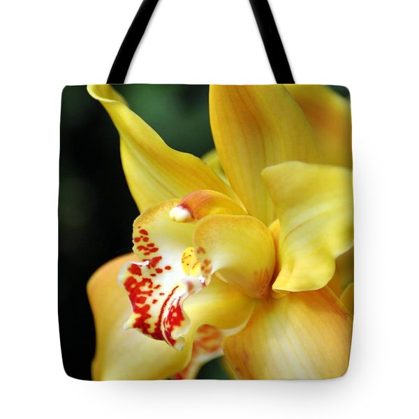 Orchid 24 Tote Bag by Marty Koch