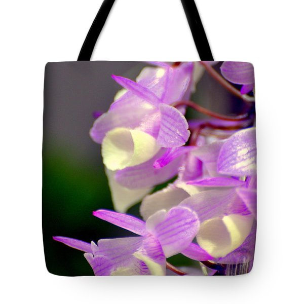 Orchid 25 Tote Bag by Marty Koch