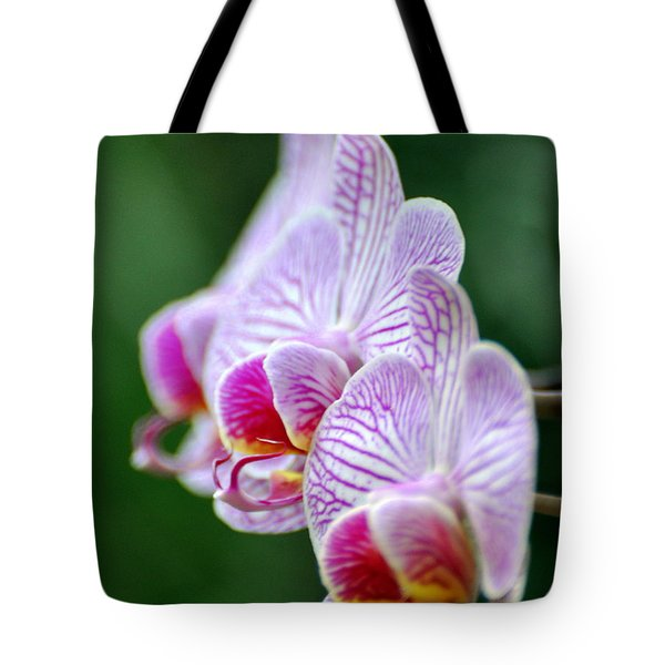 Orchid 30 Tote Bag by Marty Koch