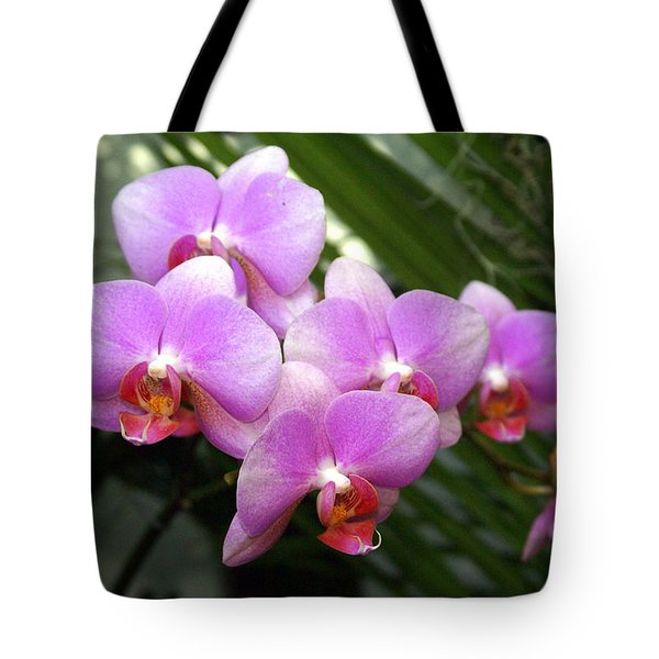 Orchid 4 Tote Bag by Marty Koch