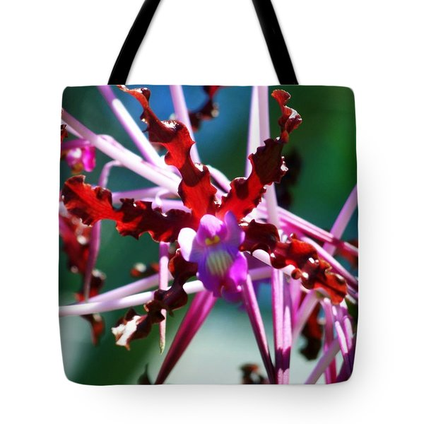 Orchid Spider Tote Bag by Karen Wiles
