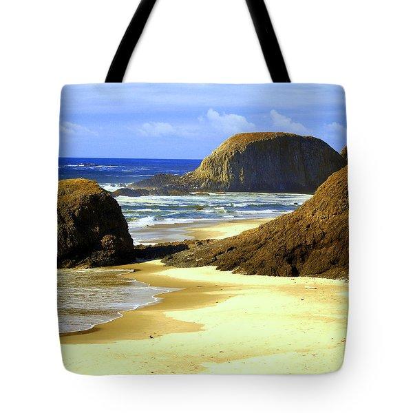 Oregon Coast 18 Tote Bag by Marty Koch