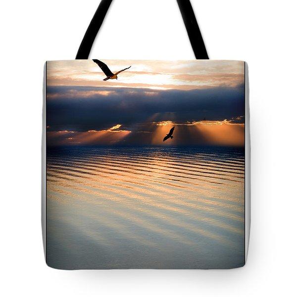 Ospreys Tote Bag by Mal Bray