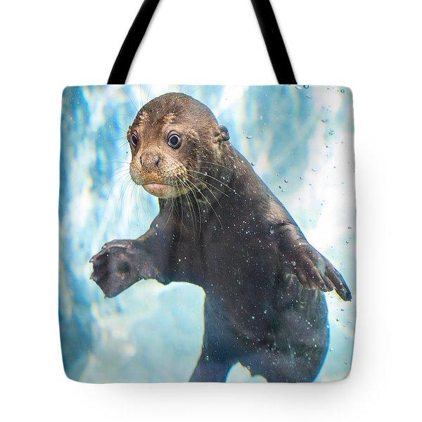 Otter Cuteness Tote Bag by Jamie Pham