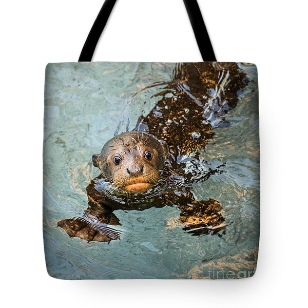Otter Pup Tote Bag by Jamie Pham