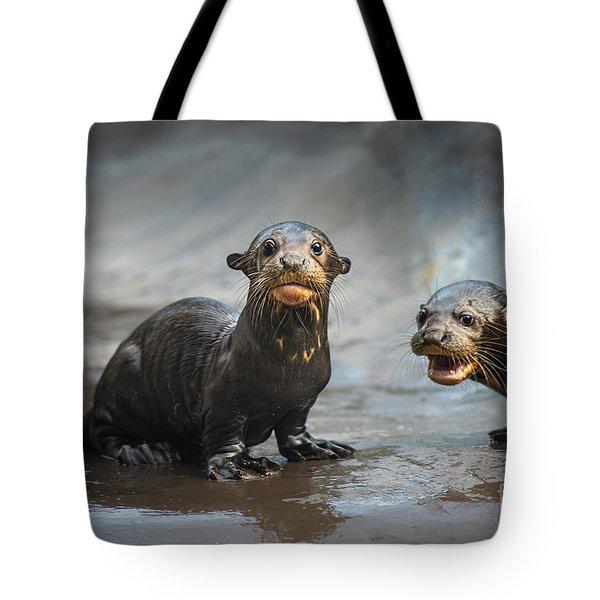 Otter Pup Pair Tote Bag by Jamie Pham