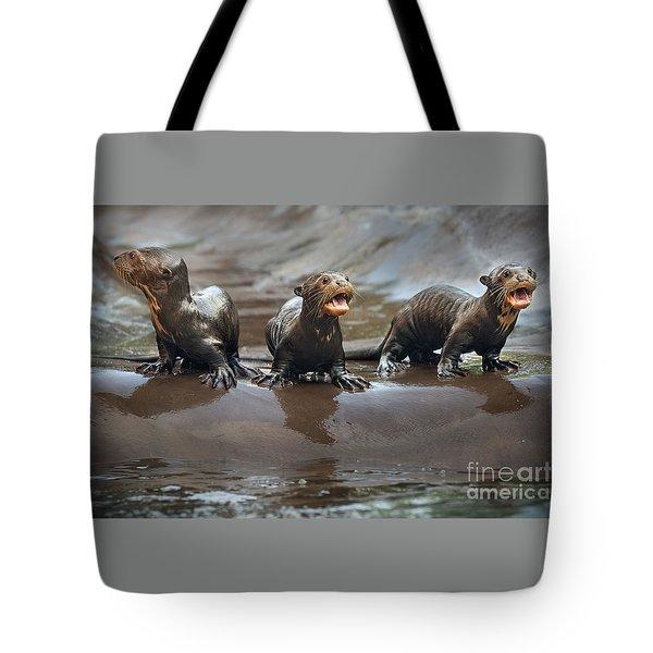 Otter Pup Triplets Tote Bag by Jamie Pham