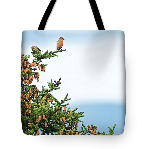 Out On A Limb # 2 Tote Bag by Matt Plyler